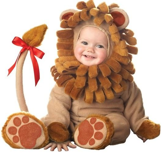 Cute Baby Lion Costume